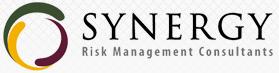 PT Synergy Risk Management